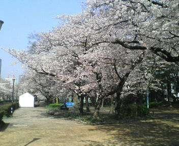 春 026