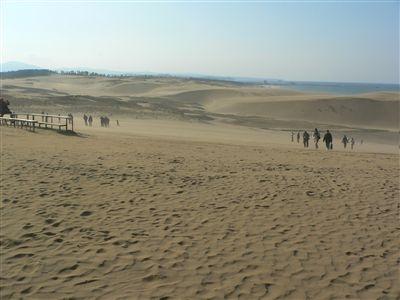 大山と砂丘 021_t