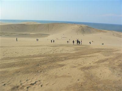 大山と砂丘 023_t