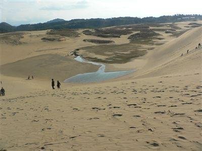 大山と砂丘 027_t
