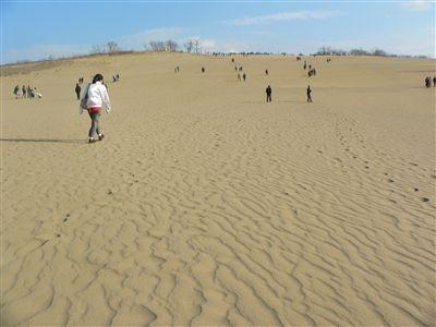 大山と砂丘 030_t