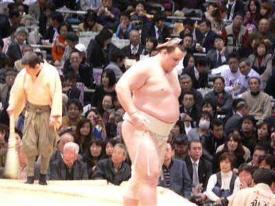 相撲 019_t