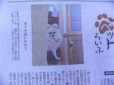 新聞 011_t