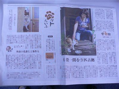 新聞 014_t