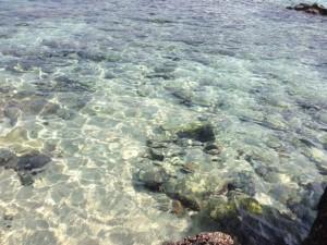 加計呂麻島の海